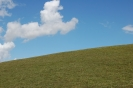 dunstable downs_1